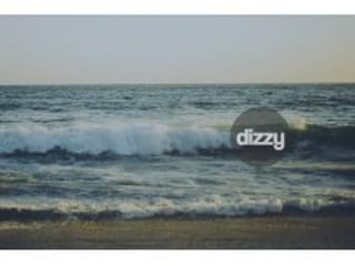 DIZZY - Custom Bodyboards